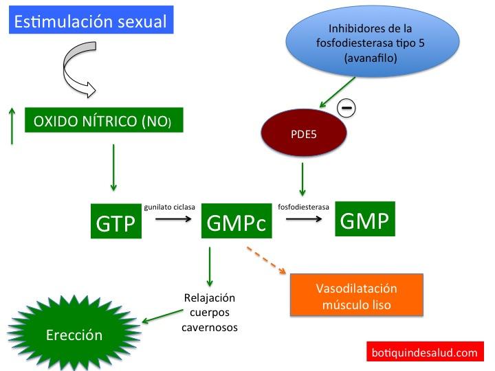 warfarina y disfunción eréctil