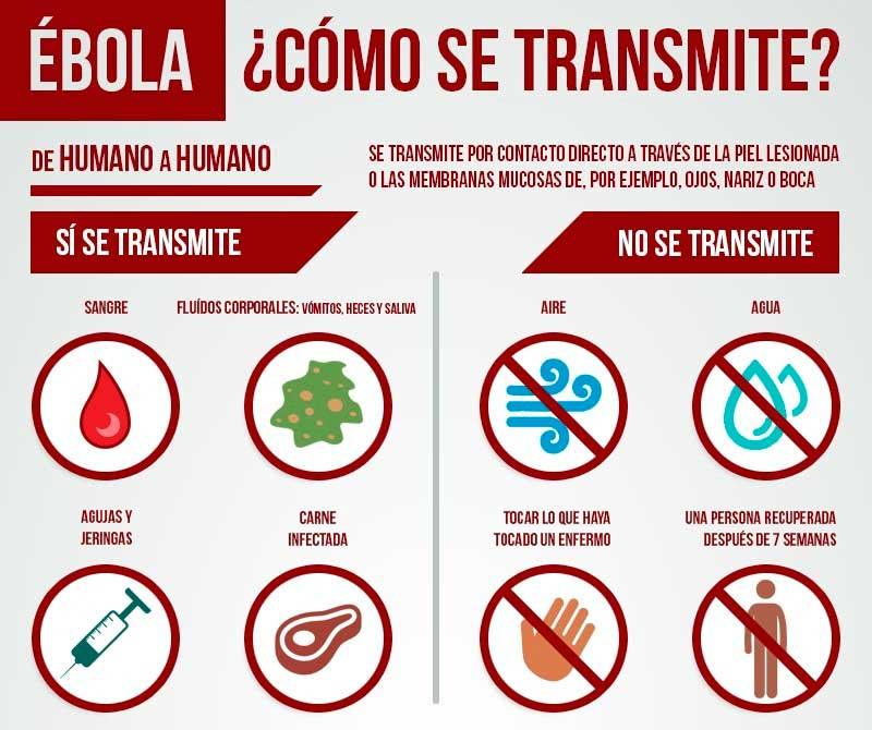 Virus del bola ehf fiebre hemorr gica del bola eve for El sida se contagia por saliva